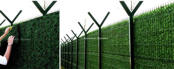 Монтаж забора из искусственной травы на сварной забор из сетки