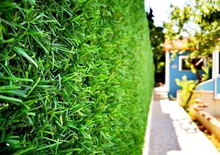 Зеленый забор ТМ Green MixTM - декоративное ограждение из искусственной травы и хвои